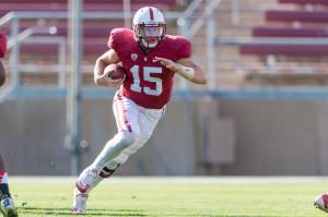 (JIM SHORIN/Stanfordphoto.com)