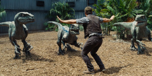 "Chris Pratt stars as Owen in ""Jurassic World"".  Photo courtesy of Universal Pictures."