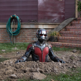 """Paul Rudd stars as Scott Lang in Marvel's """"Ant Man."""" (Zade Rosenthal, Marvel)"""