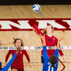Stanford, CA, September 12, 2014.Stanford Women's Volleyball vs. Duke at Maples Pavilion. Stanford won 4-2.