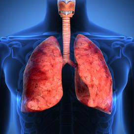 NEW.020816.fibrosis