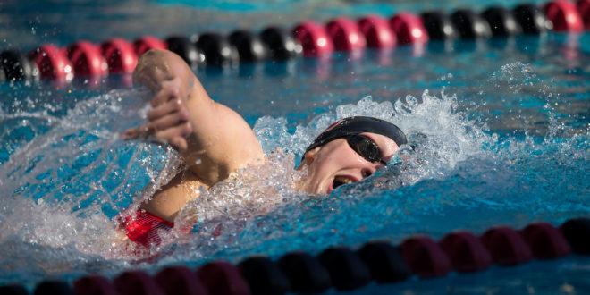 Ledecky headlines star-studded Big Swim as No. 1 Cardinal complete perfect season