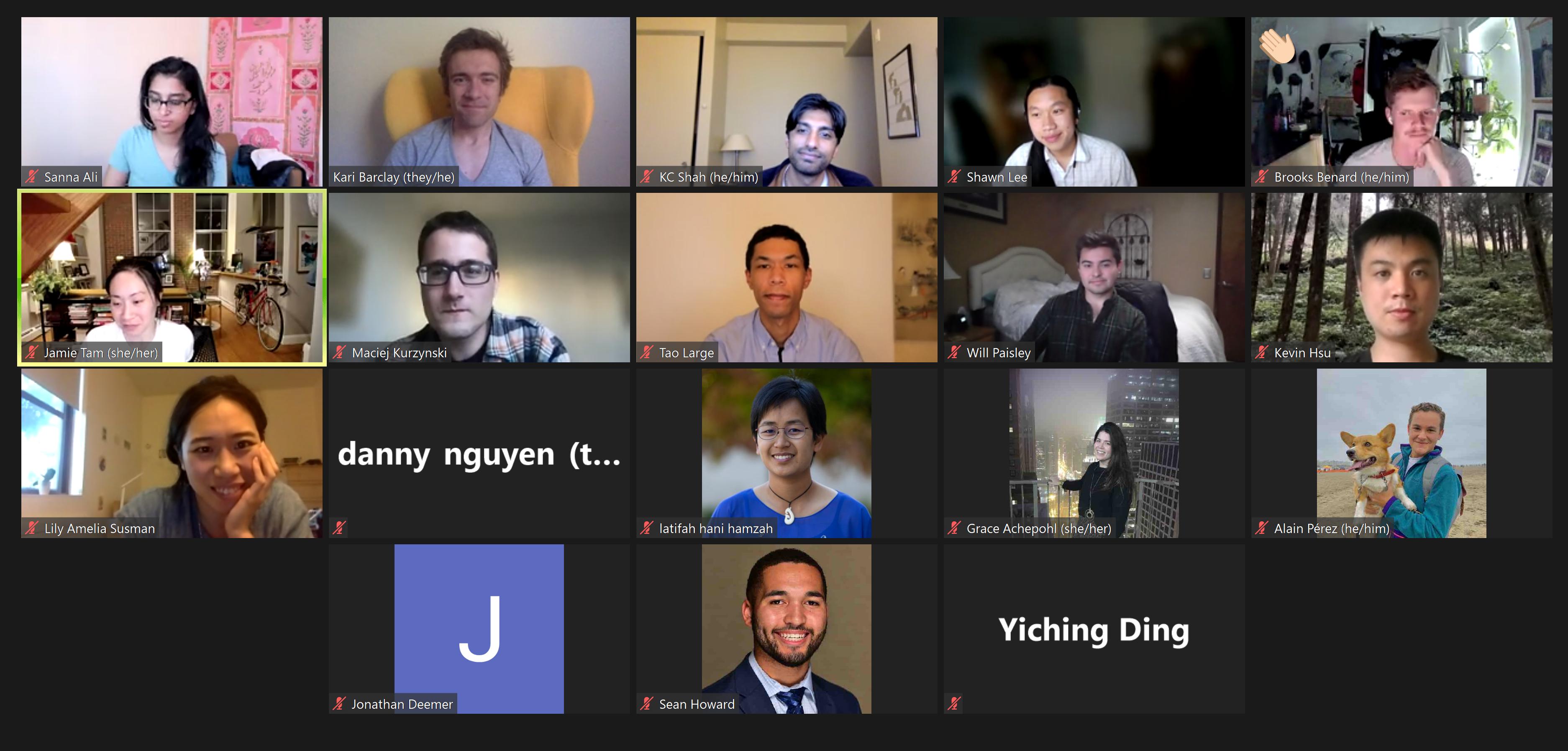 Screenshot of councilors on Zoom